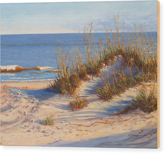 Beach Dune, Atlantic Ocean Beach Wood Print by Elaine Farmer