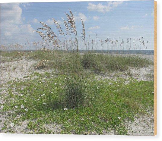 Beach Flowers And Oats 2 Wood Print