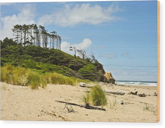 Beach Forest Wood Print