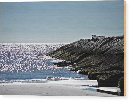 Beach Jetty Wood Print