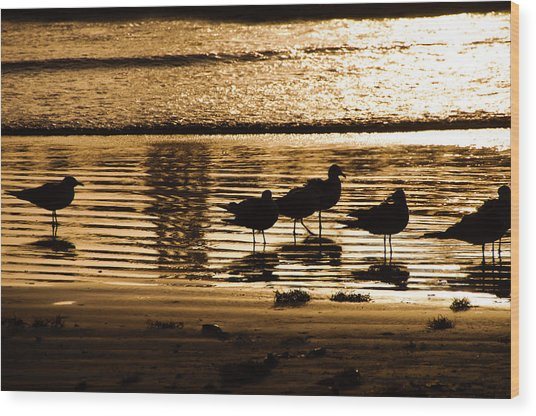 Beach Morning Wood Print