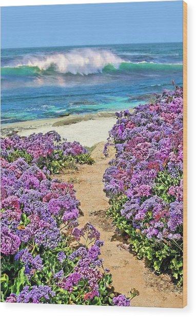 Beach Pathway Wood Print