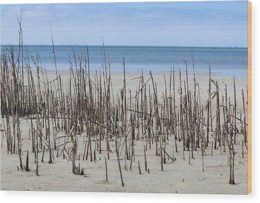 Beach Scene Wood Print