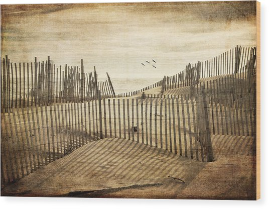 Beach Shadows Wood Print