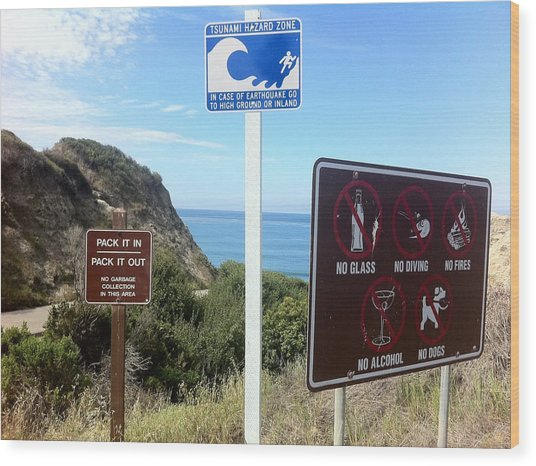 Beach Signs San Clemente Wood Print