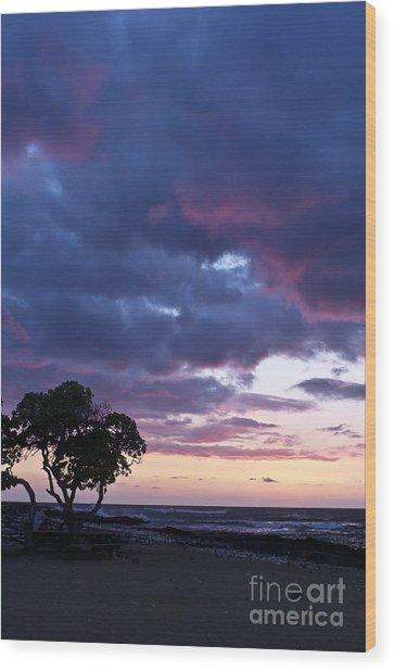 Beach Sunset Wood Print by Karl Voss