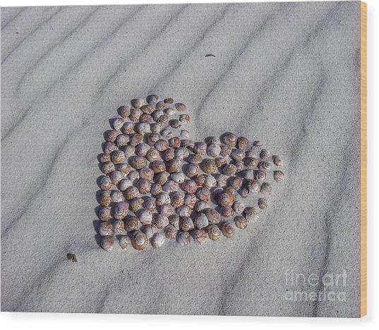 Beach Treasure Wood Print