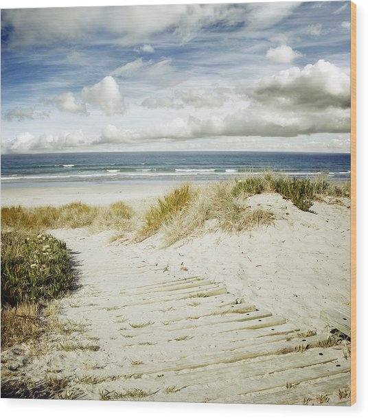 Beach View Wood Print