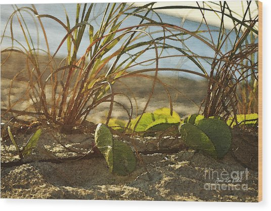 Beach Vine Wood Print