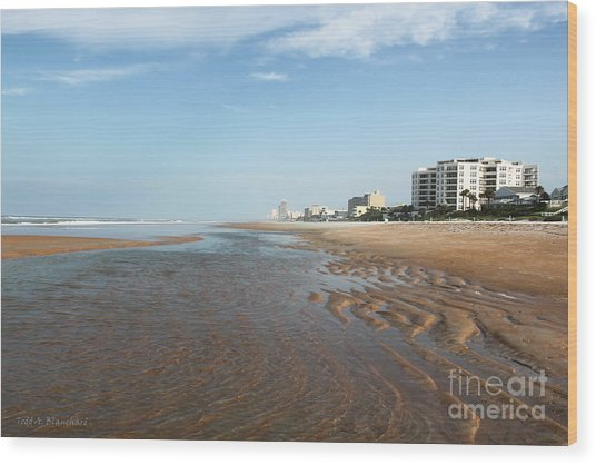 Beach Vista Wood Print