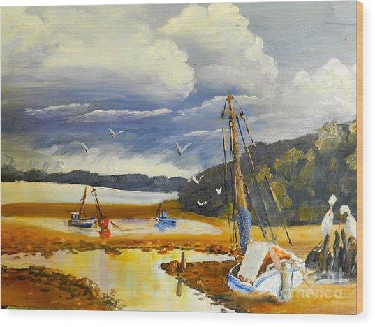 Beached Boat And Fishing Boat At Gippsland Lake Wood Print