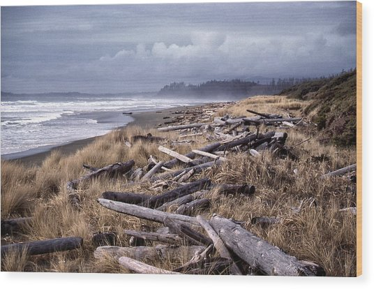 Beached Driftlogs Wood Print
