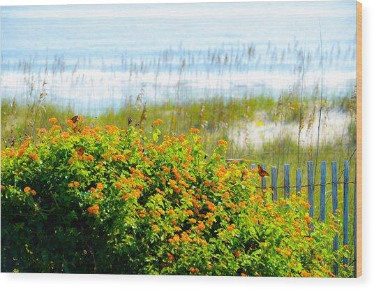 Beachy Butterflies  Wood Print