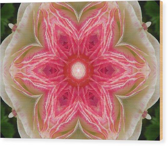 Beacon Of Light Rose Mandala Wood Print