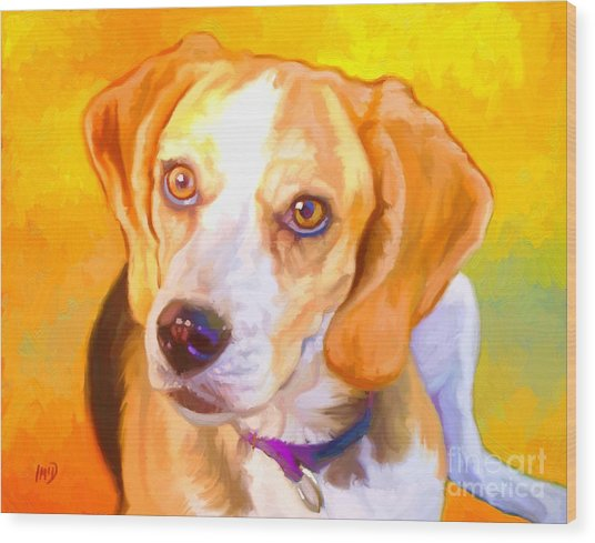 Beagle Dog Art Wood Print by Iain McDonald
