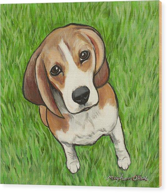 Beagle  Wood Print