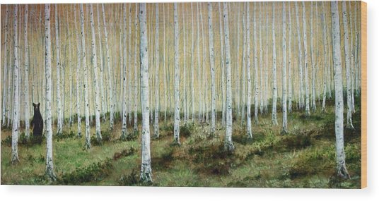 Bear Encounter Wood Print