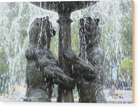 Bear Fountain Wood Print
