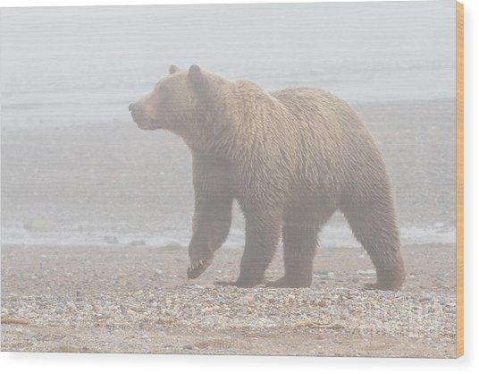 Bear In Fog Wood Print