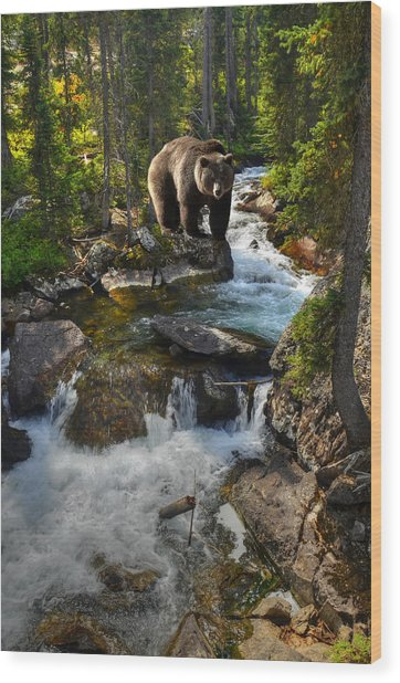 Bear Necessity Wood Print