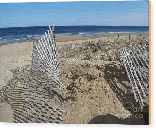Beautiful Beach Day Wood Print