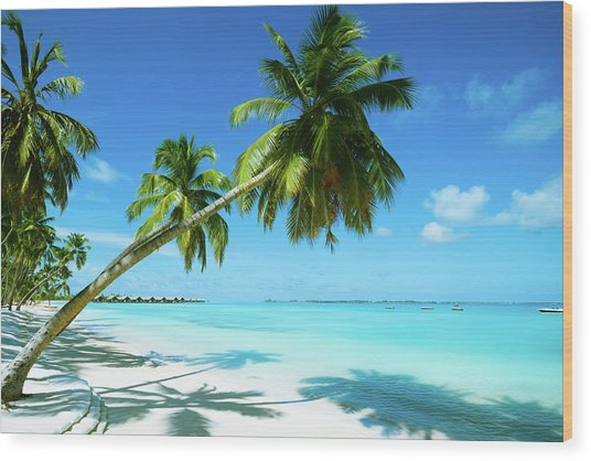 Beautiful Beach Resort Wood Print by Phototalk