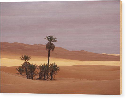 Beautiful Desert Wood Print