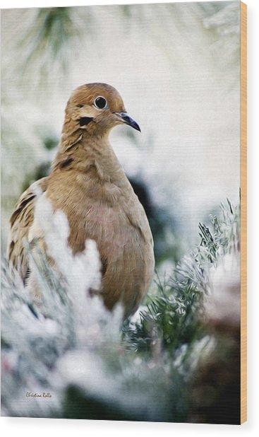 Beautiful Dove Wood Print