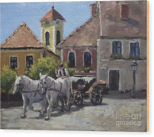 Beautiful European Town Szentendre Wood Print