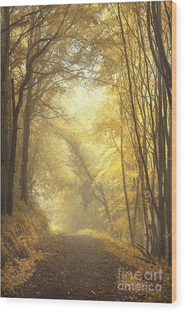 Beautiful Fall Wood Print