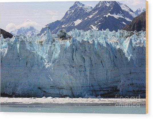 Beautiful Glacier Bay Wood Print by Sophie Vigneault