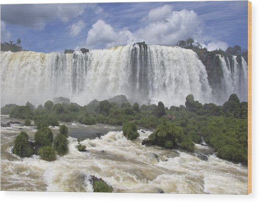 Beautiful Iguazu Waterfalls  Wood Print