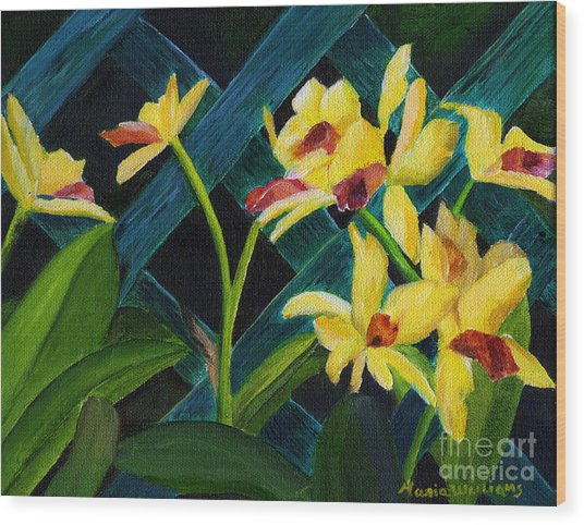 Beautiful Orchids  Wood Print by Maria Williams