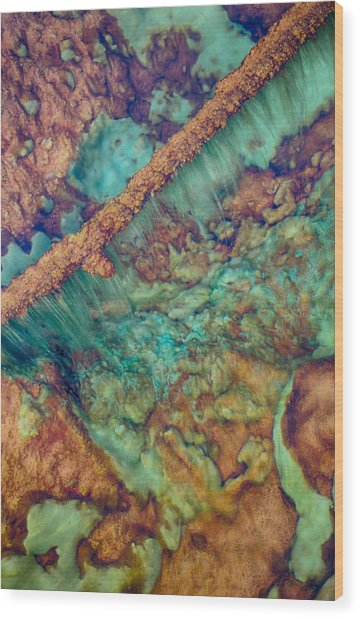 Beautiful Rebar Hot Springs Wood Print