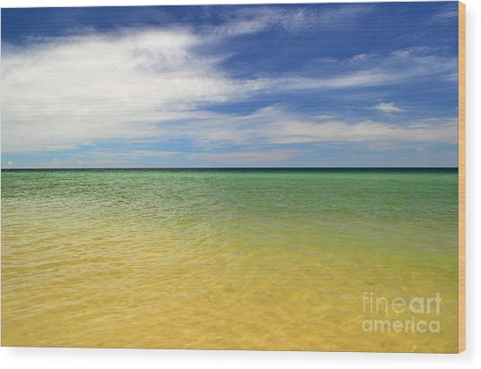 Beautiful St George Island Water Wood Print