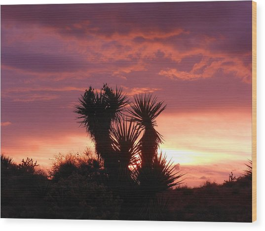 Beautiful Sunset In Arizona Wood Print