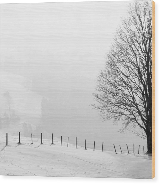 Beautiful Winter Landscape With Tree And Fence Wood Print