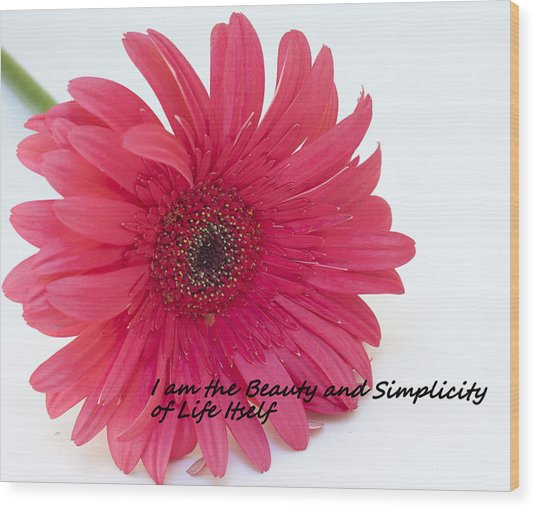 Beauty And Simplicity Wood Print
