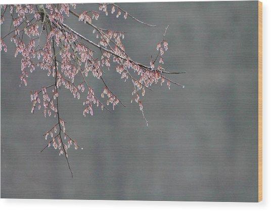 Beauty Awaiting Wood Print