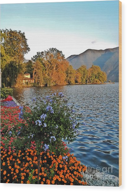 Beauty Of Lake Lugano Wood Print