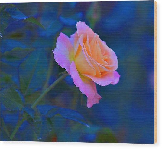 Flower 9 Wood Print