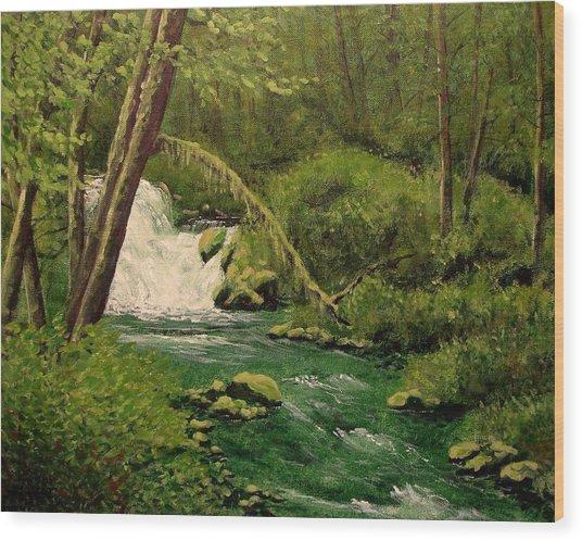 Beaver Creek Falls Wood Print