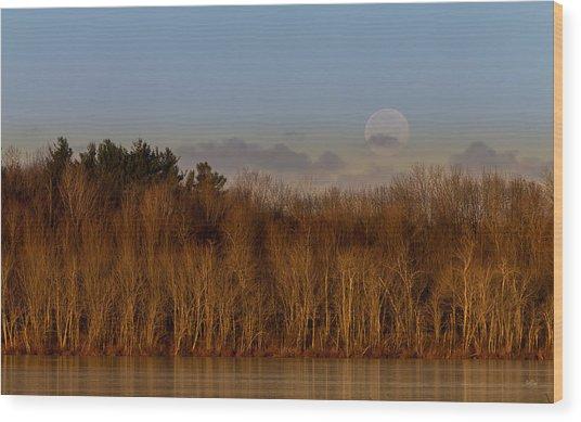 Beaver Lake Wood Print
