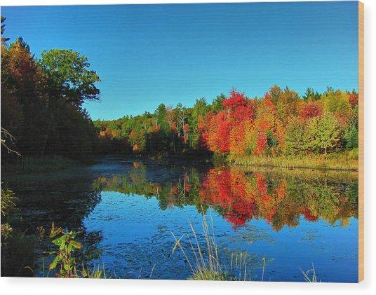 Beaver Pond Foliage Wood Print