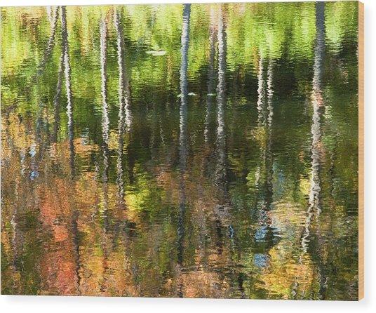 Beaver Pond Reflections 1 Gatineau Park Quebec Wood Print