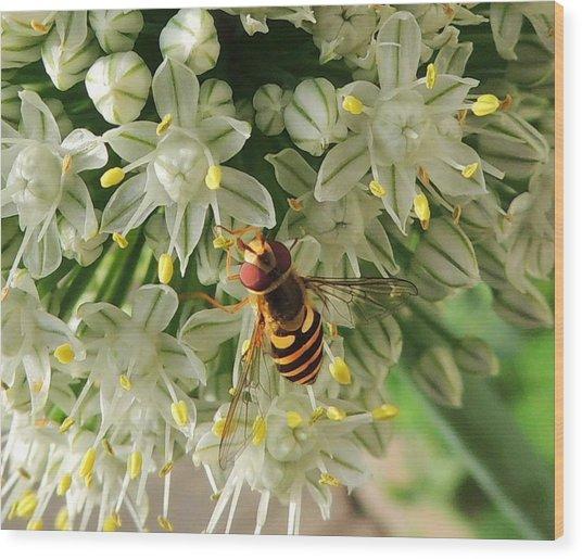 Bee Beautiful Wood Print
