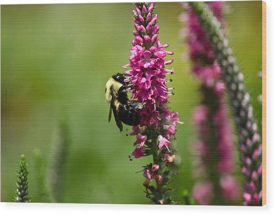 Bee Heaven Wood Print