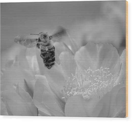 Bee Rising Wood Print