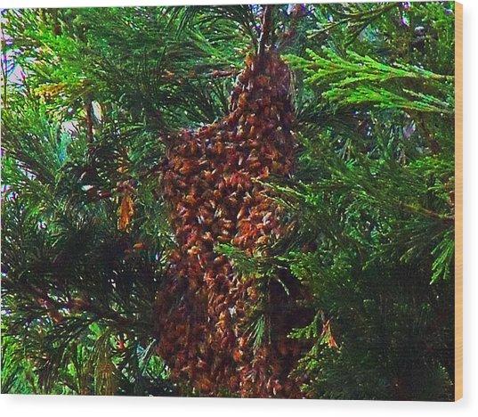 Bee Swarm Wood Print