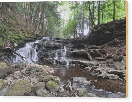 Beecher Creek Falls Edinburg Ny Wood Print